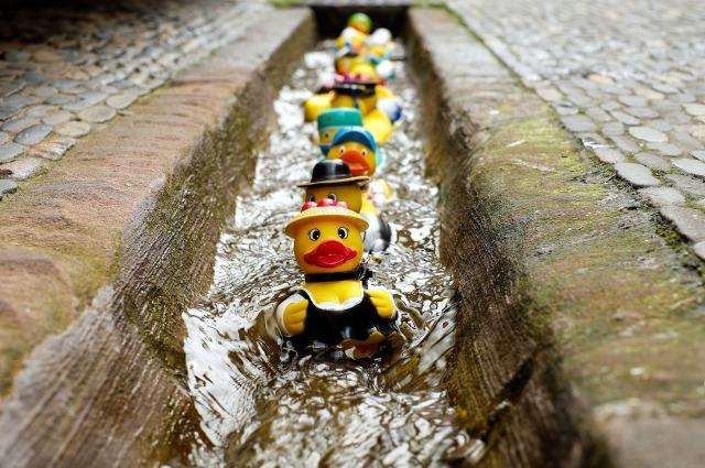 rubber-ducks-pixabay